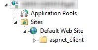 IIS Default Website